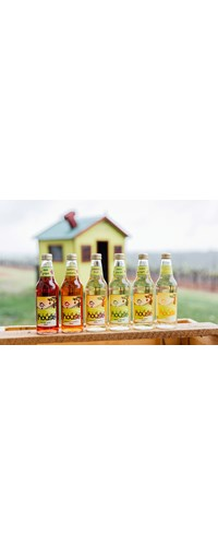 6 Mixed Pack Cider