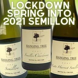 LOCKDOWN Spring into 2021 Semillon (6pk)