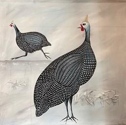 Guinea Fowl 5