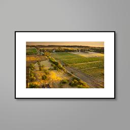 Print: Henschke Hill of Grace Vineyard Aerial Photograph